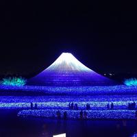 Lễ hội ánh sáng Nhật Bản hoành tráng nhất năm khiến giới trẻ sôi sục