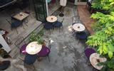Corner Caffe & Dining -  Tú Xương
