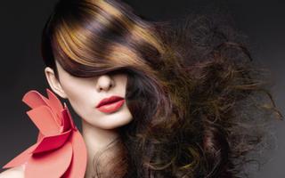 Windy Hair Salon - Đoàn Văn Bơ
