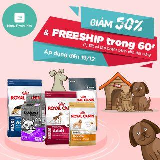[Bỏ túi] 1001 bí kíp chăm sóc thú cưng cùng ưu đãi giảm sốc tới 50%