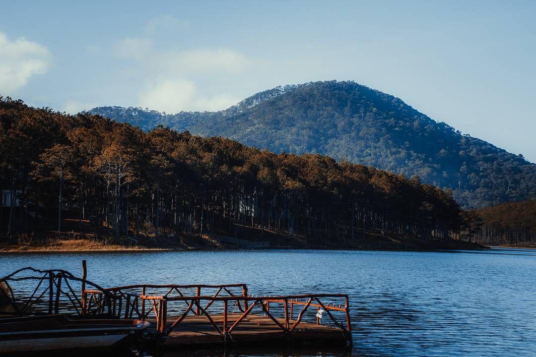Sắc Xanh Của Một Hồ Tuyền Lâm Tràn Đầy Nhựa Sống