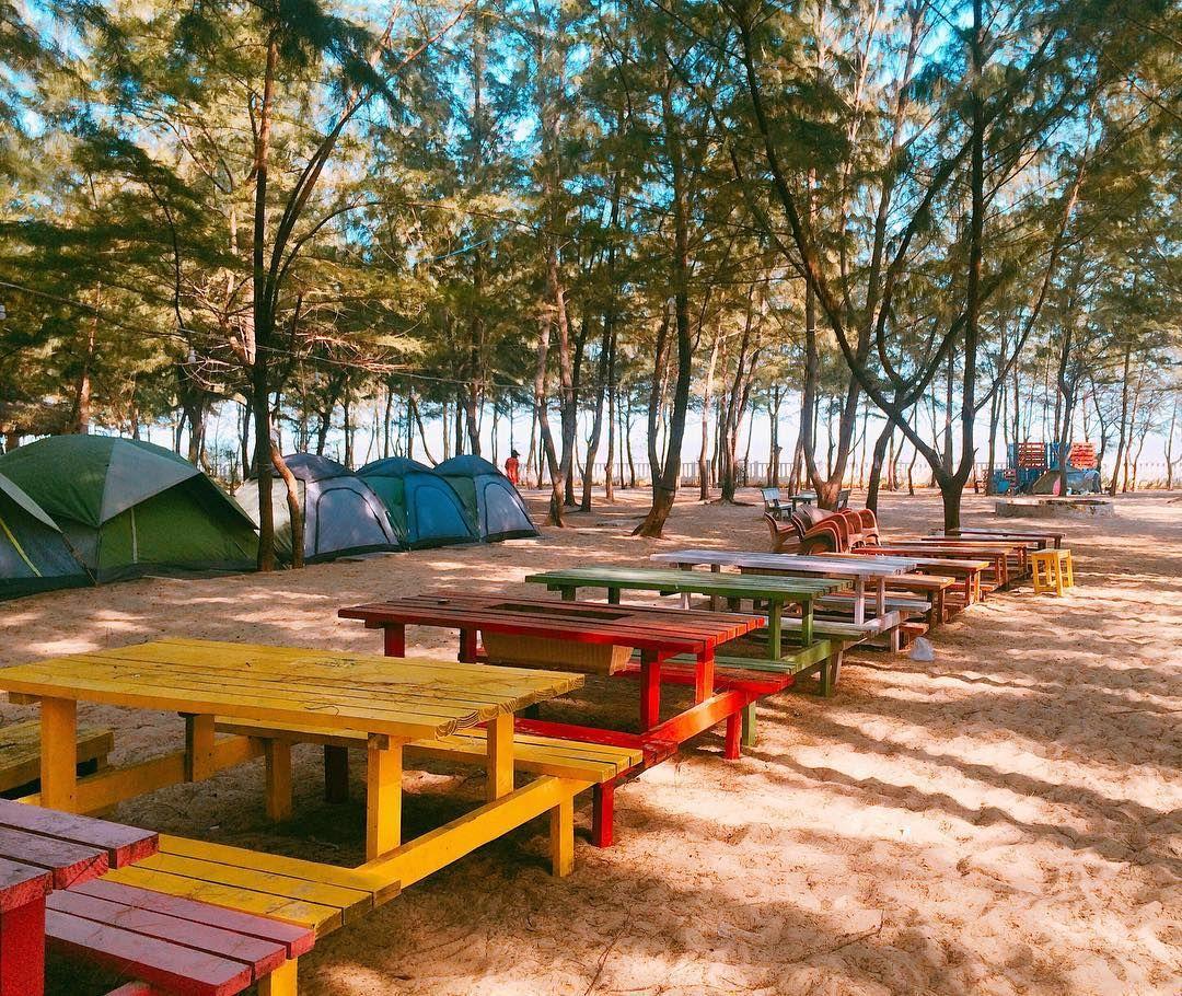 Kết quả hình ảnh cho địa điểm picnic