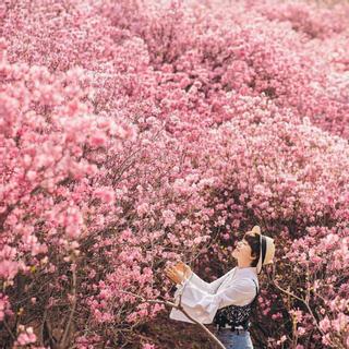 Hàn Quốc đã miễn visa, xách balo lên và đi đến xứ sở cổ tích thôi!
