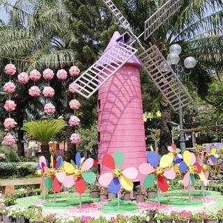 Rộn ràng sắc Xuân đường hoa phố đi bộ lớn nhất Biên Hòa