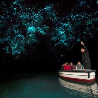Hang động Waitomo Glowworm - Thiên đường của những con đom đóm