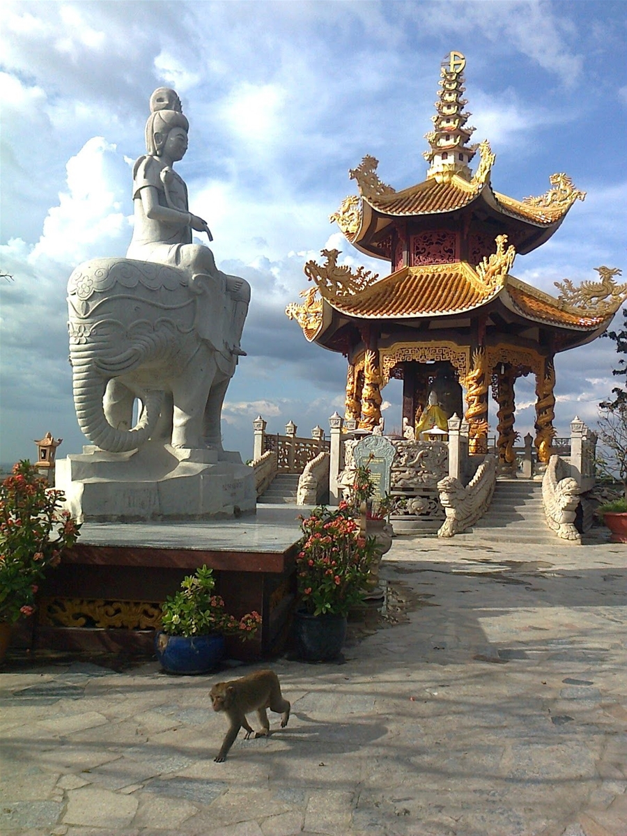 Bật mí cho các bạn là trên chùa có rất nhiều em khỉ hiếu động, nên cẩn thận nha.