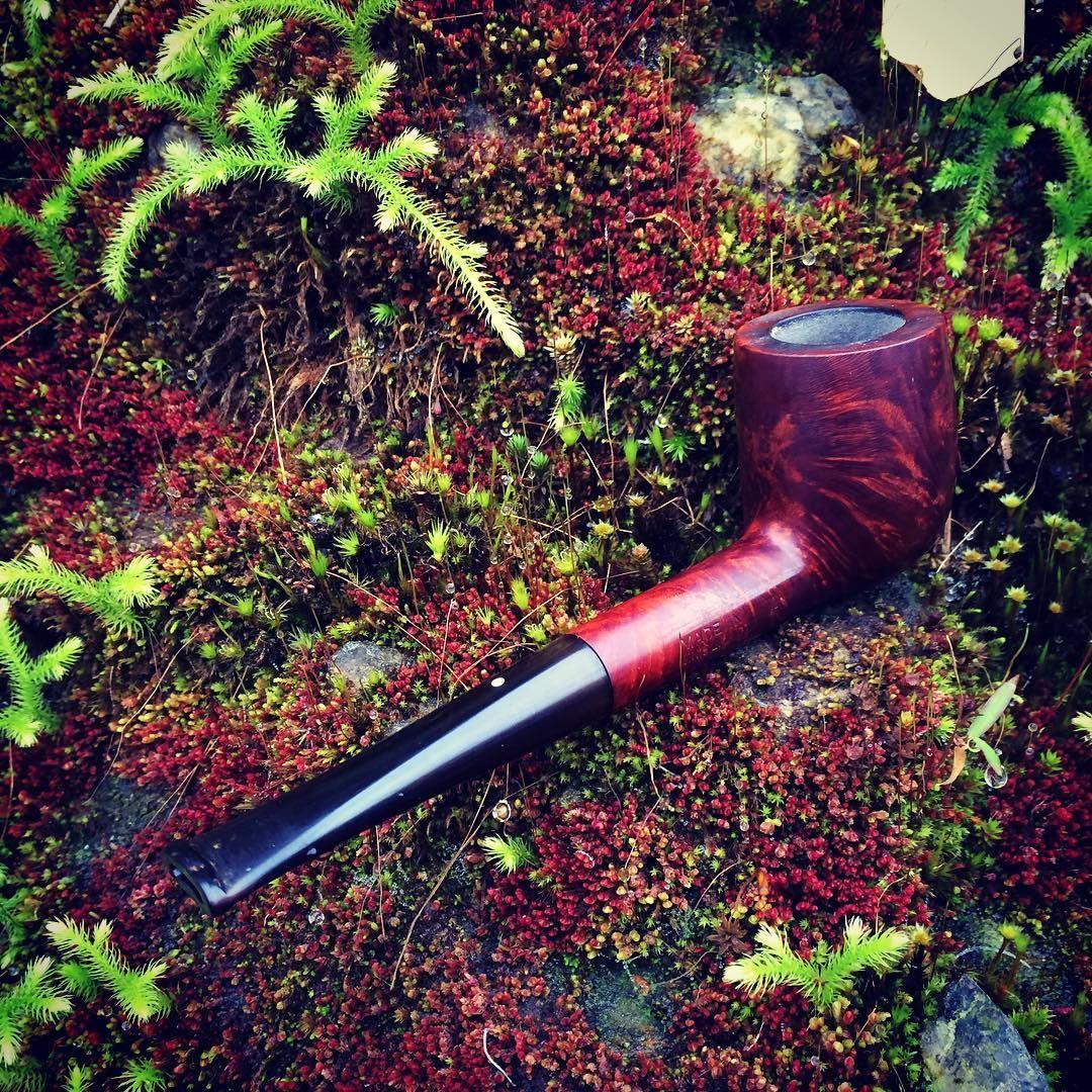 rêu đỏ ở Chiêu Lầu Thi