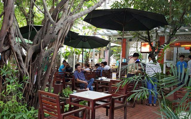 Nemo Cafe - Không Gian Sân Vườn ở TP. HCM