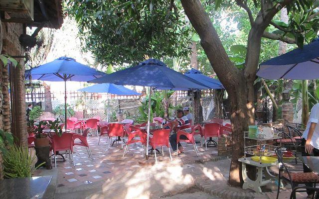 Cafe Bar Đồng Dao - Không gian mới ở Vũng Tàu