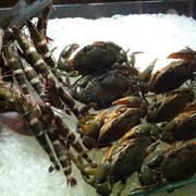 Cua tôm hải sản nướng