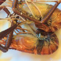 Hồng Hải Seafood