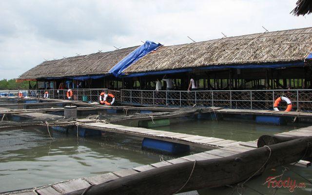 Bè Hào Đực Nhỏ Long Sơn - Hải Sản Tươi Sống ở Vũng Tàu