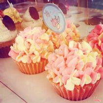 Fly Cupcake Garden - Tú Xương