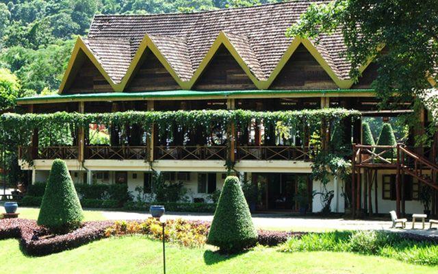 Trà My Vàng - Ẩm thực Madagui ở Lâm Đồng