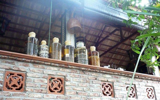 """Vườn ẩm thực Rắn Ráo - Đặc sản """"rắn Lệ Mật"""" ở Hà Nội"""