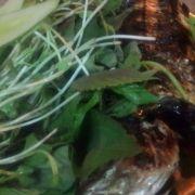 Cá sòng nướng, kèm rau sống