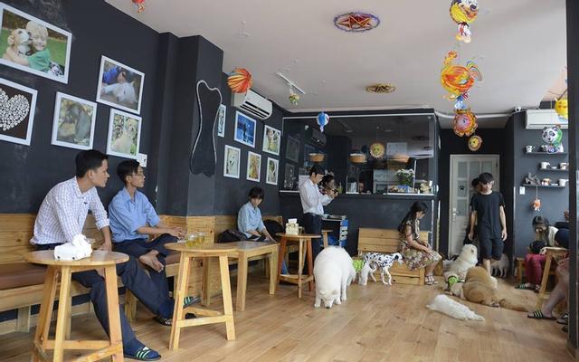 Hachiko Coffee - Cafe Thú Cưng