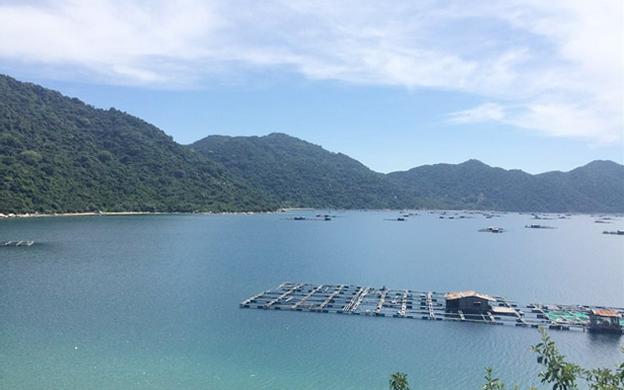 Vũng Rô Đông Hòa Phú Yên