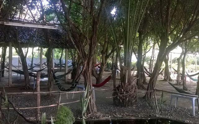 Huyền Ngọc - Cafe Võng ở Cần Thơ