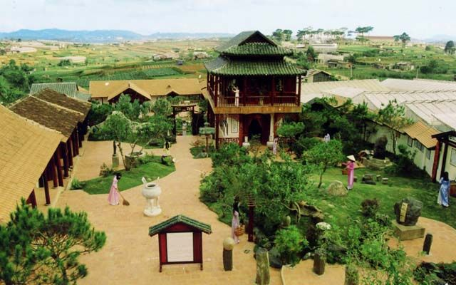 XQ Đà Lạt Sử Quán - Mai Anh Đào ở Lâm Đồng
