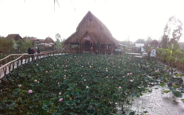 Bàu Sen - Nhà Hàng Sinh Thái ở Đồng Tháp