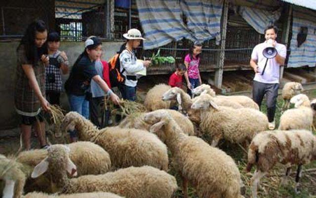Trang Trại Đồng Quê Ba Vì - Vân Hòa ở Hà Nội