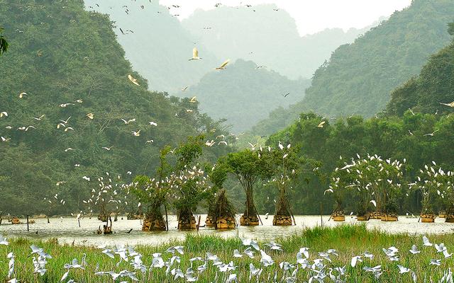 Khu Bảo Tồn Thiên Nhiên Vân Long ở Ninh Bình