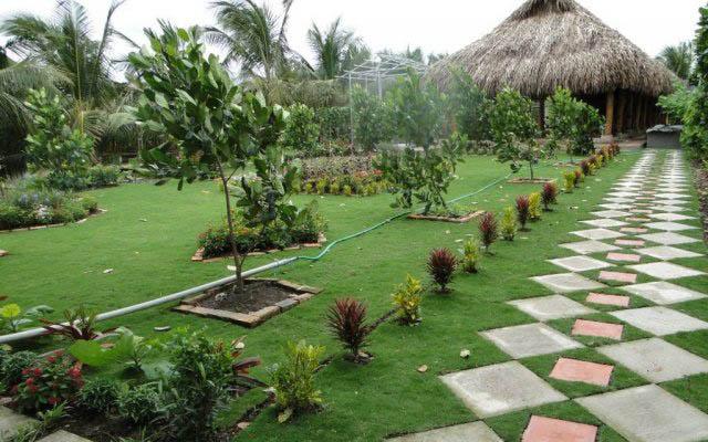 Vườn Sinh Thái Hoa Súng ở Cần Thơ
