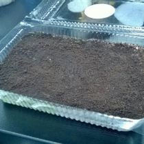 Oreo Cheese Cake - Bán Online