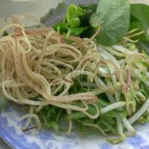 Cơm Chay An Duyên - Lê Quang Định