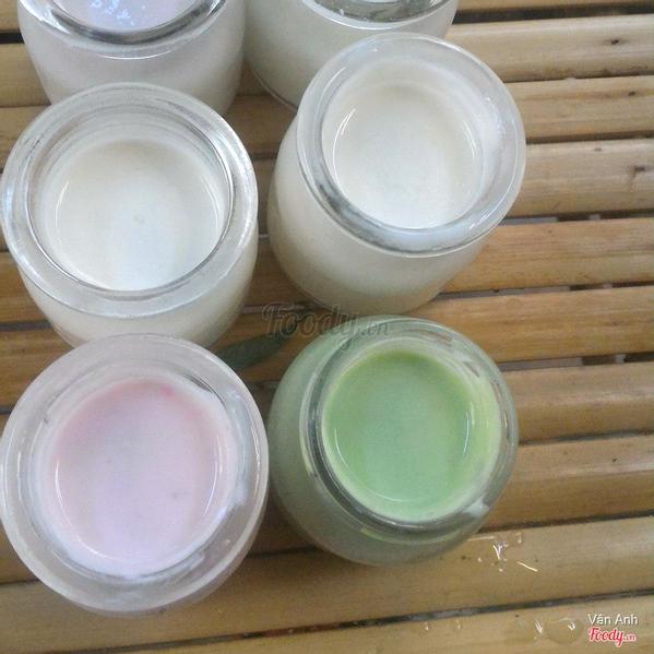 yogurt-viet-quoc
