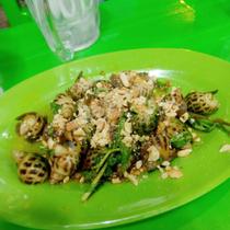 Ốc Cây Bàng - Tạ Quang Bửu