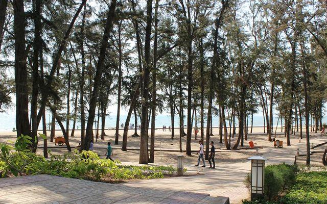Công Viên Đồi Dương ở Bình Thuận