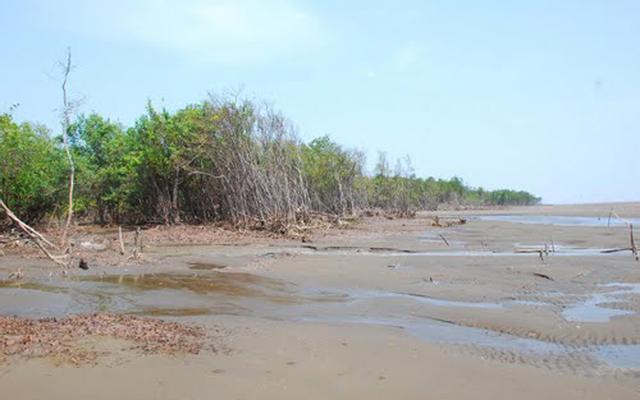 Khu Du Lịch Hồ Bể ở Sóc Trăng