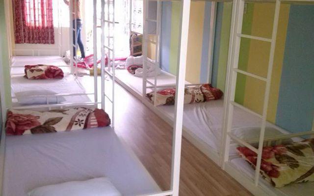 Da Lat Green Hostel ở Lâm Đồng