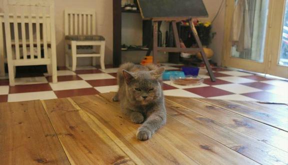 Altico Cafe - Cafe Mèo