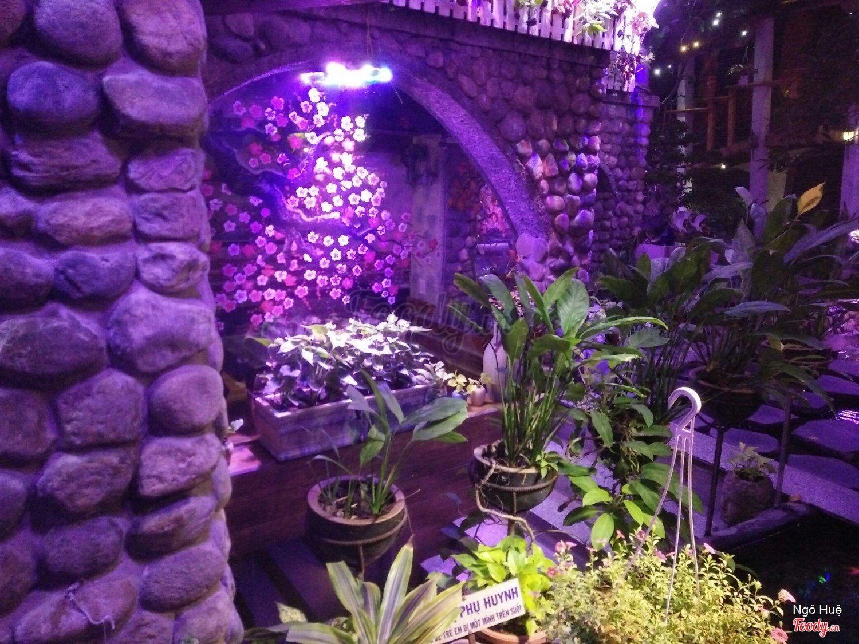 Quán cafe đẹp ở Sài Gòn - Oasis Cafe - 454