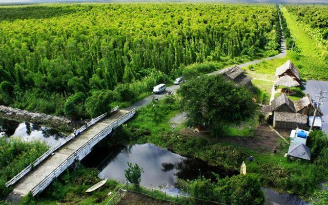 Vườn Quốc Gia U Minh Hạ ở Cà Mau