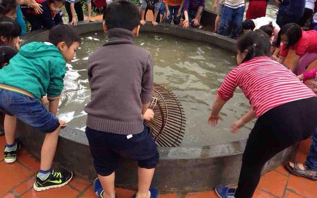 Trang Trại EcoGarden Thái Dương ở Hà Nội