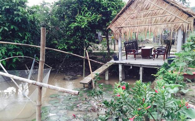 Ấp An Thuận, Xã An Bình Long Hồ Vĩnh Long