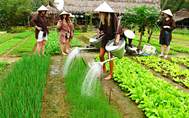 Cẩm Hà Tp. Hội An Quảng Nam