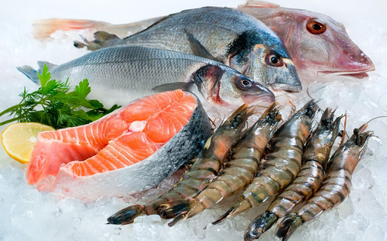 Image result for hải sản đông lạnh