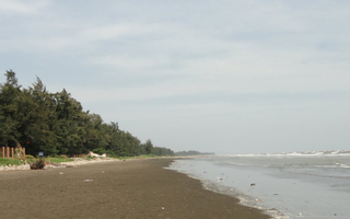 Bãi Biển 30 Tháng 4 - Cần Giờ
