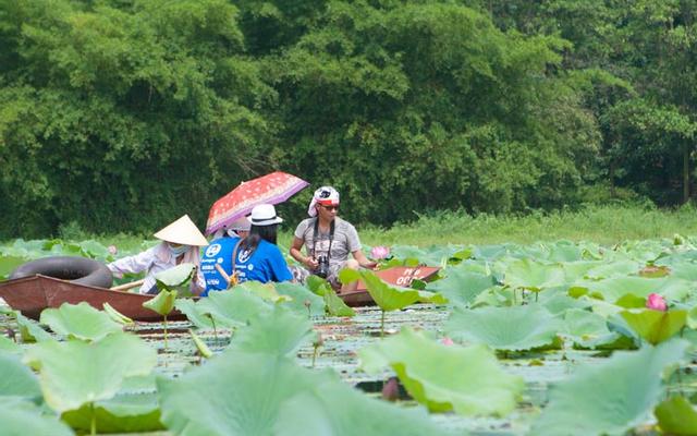 Hồ Quan Sơn ở Hà Nội
