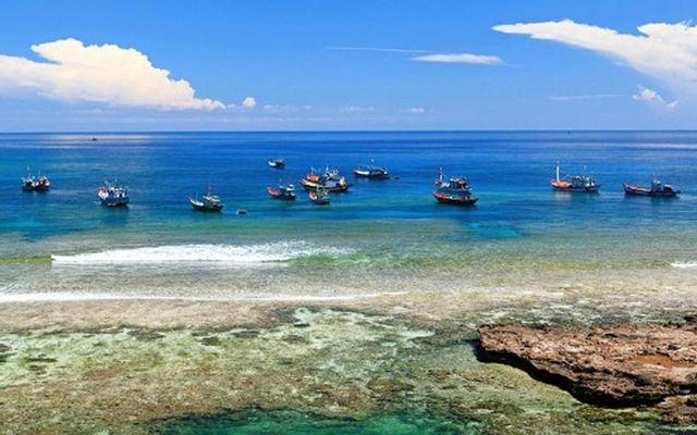 Bãi Biển Dung Quất ở Quảng Ngãi