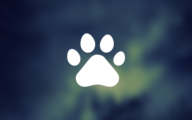 Bệnh Viện Thú Y Pet Care 2