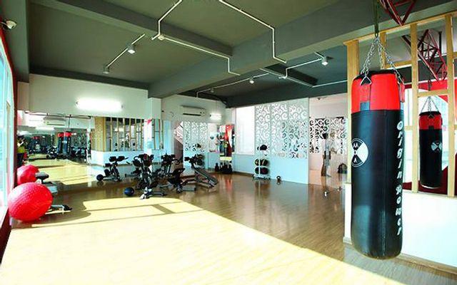 VShape Gym & Yoga ở TP. HCM