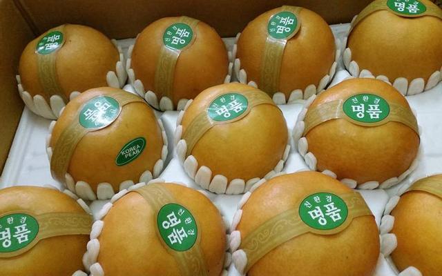 Bingo Fruit - Trái Cây Nhập Khẩu ở Hà Nội
