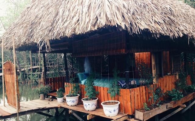 Cánh Đồng Hoa - Springfield Cottage - Khu Nghỉ Dưỡng Sinh Thái ở TP. HCM