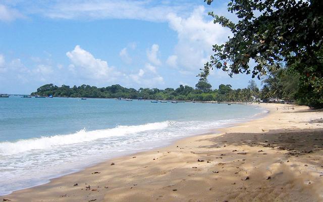 Du Lịch Sinh Thái Hồ Bể ở Sóc Trăng